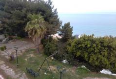 Остров закинф греция апартаменты